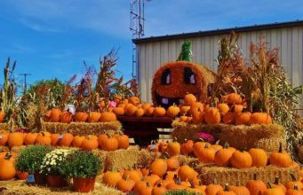 Fall Harvest Festivals USA