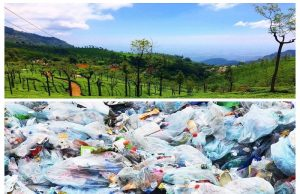 Ooty bans use of single plastic products