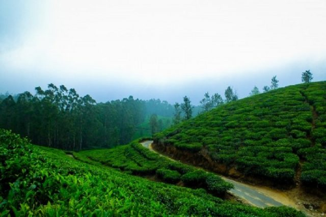 Hill Stations in India for a perfect Holiday