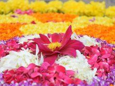 Onasadhya