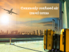 Commonly confused air travel terms