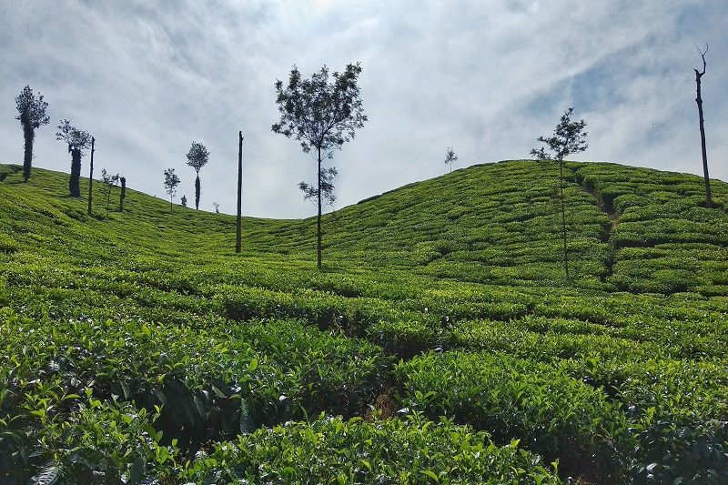 Weekend Trips from Banglore
